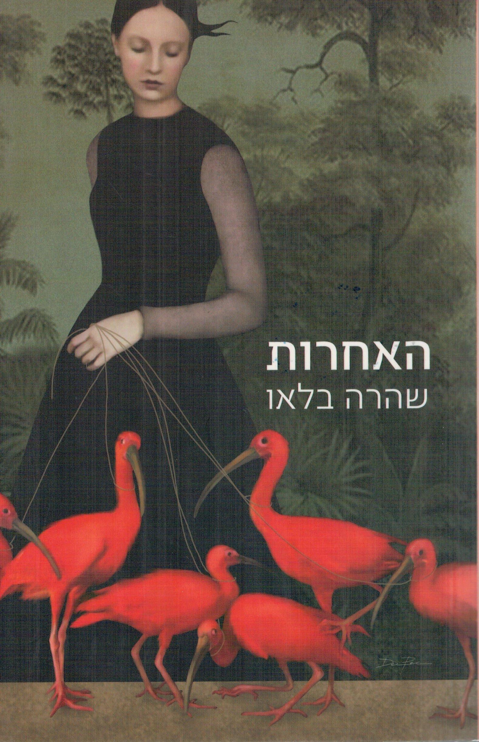 תמונה של הספר האחרות